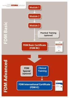 EFDMA_Ausbildungsweg_EN_WEB